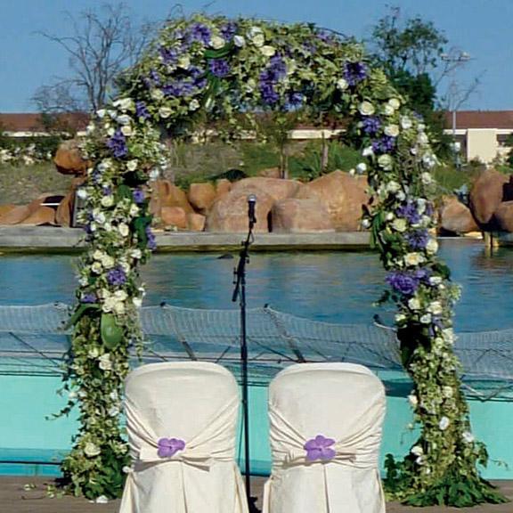 Arche-ceremonie-laique-3